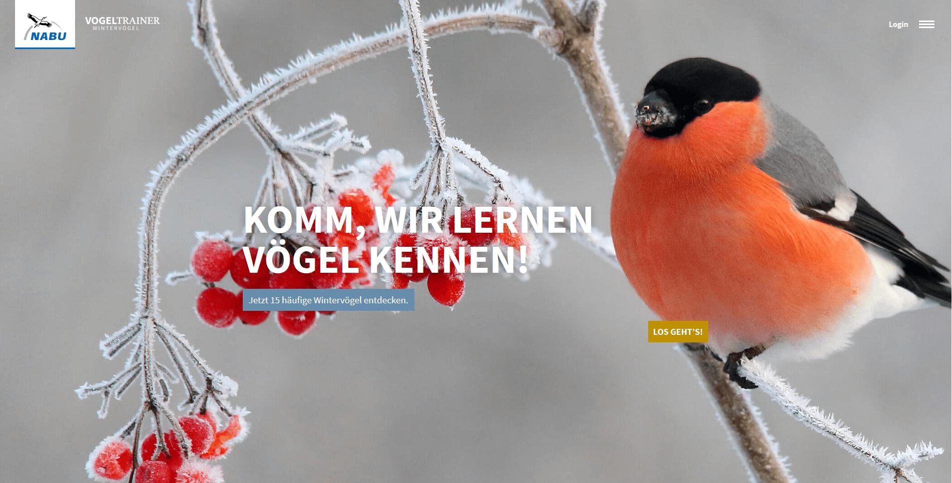 Vogeltrainer Wintervögel