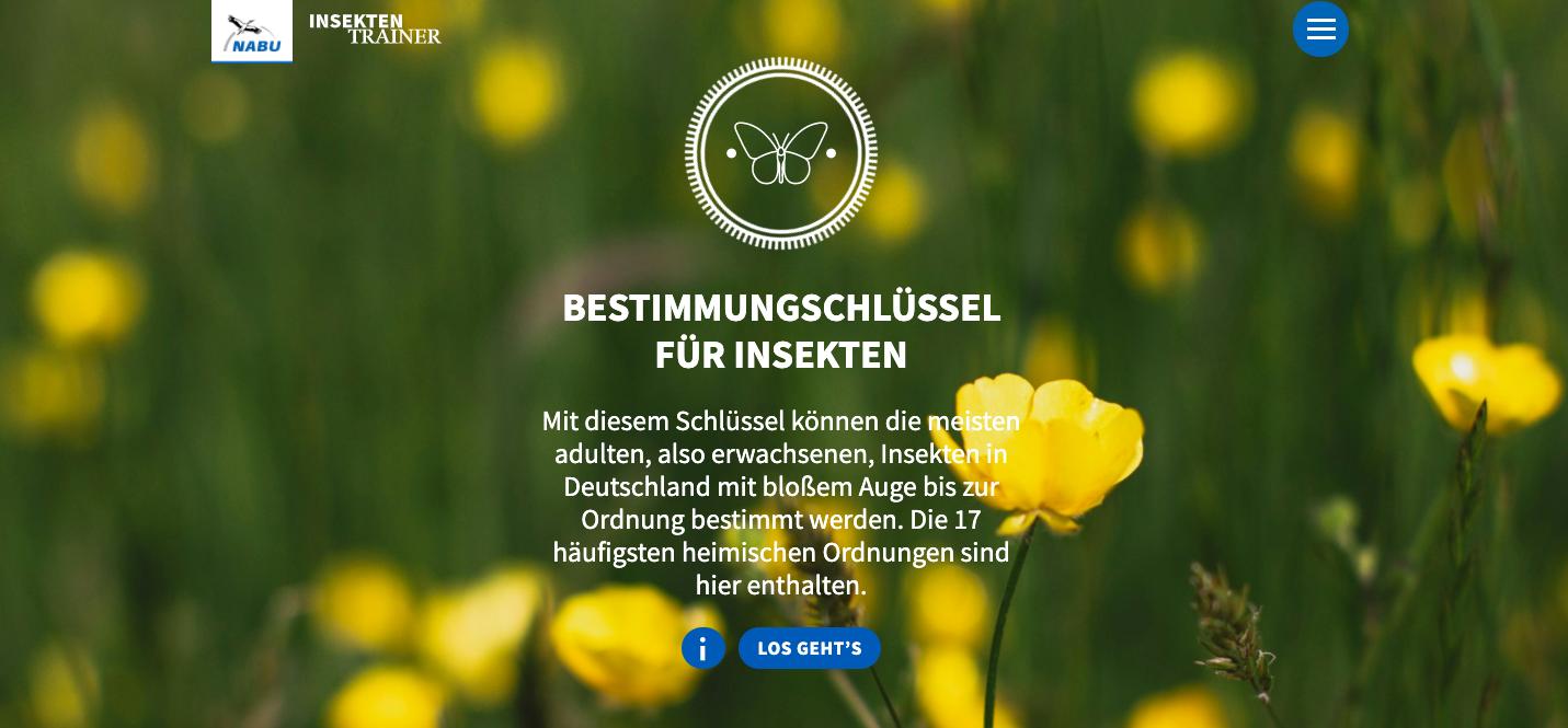 Screenshot der Startseite des Insektenbestimmungsschlüssels