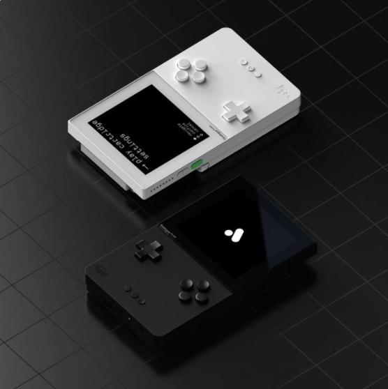 Bild von zwei neuen GamaBoys in schwarz und weiß